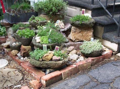 Rock Garden Herbs 1000 Images About Rock Gardening On Pinterest Gardens Border Plants And Front Yard Landscaping