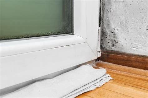 mold in bedroom mold in bedroom symptoms 28 images black mold in