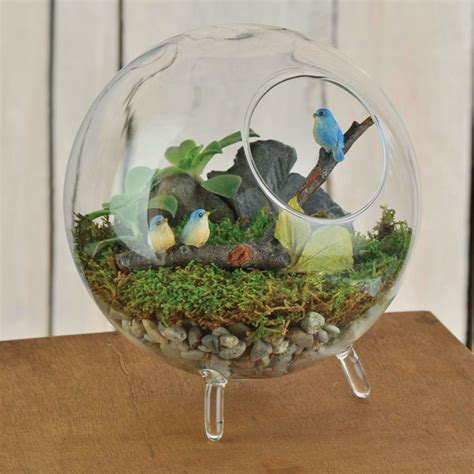 fairy terrarium best 25 terrarium ideas on terrarium terrarium diy and diy terrarium
