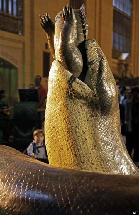 film ular boa replika titanoboa ular terbesar di dunia indoking