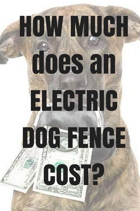 electric fence cost how much does an electric fence cost dig your