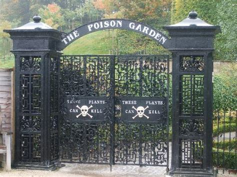 the poison garden alnwick castle picture of the alnwick