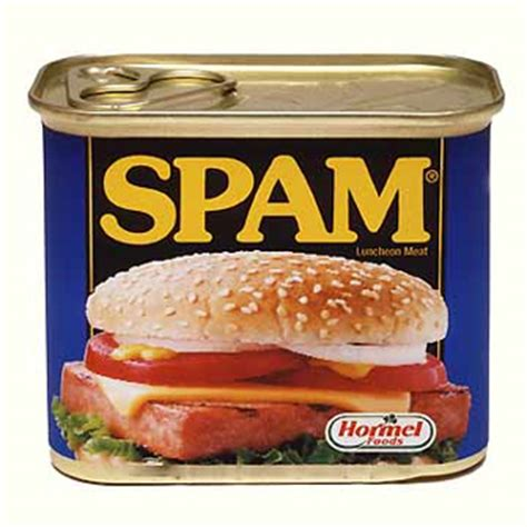 how the word spam came to mean junk message