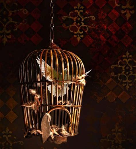uccello in gabbia un uccello in gabbia fusione degli oggetti con akvis