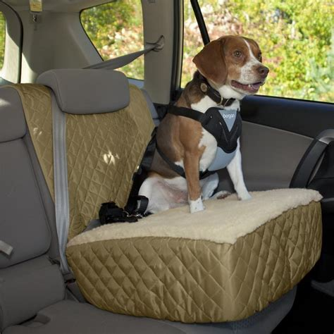 pictures of car seats for dogs car seat booster elevated car seat orvis uk