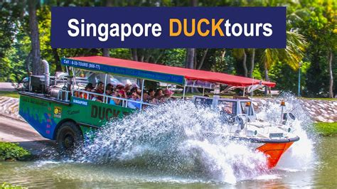 duck boat tours singapore singapore duck tours best hibious attractions one