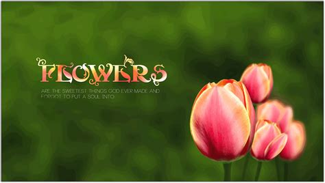 Flower Quotes Pics Flowers Quotes