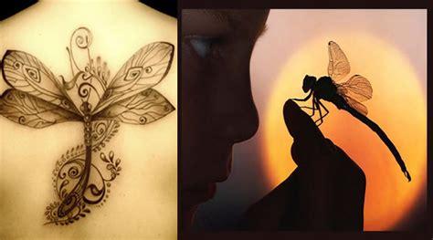 imagenes de tatuajes de libelulas tatuajes de lib 233 lulas tatuajes de animales