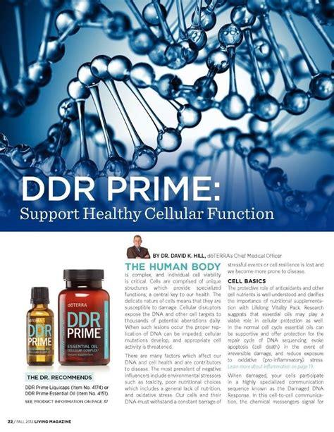 DDR Prime and Speech Improvements Lemongrass Benefits Cancer
