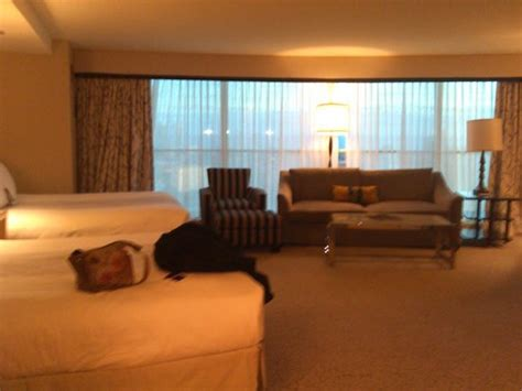 borgata room rates room picture of borgata hotel casino spa atlantic city tripadvisor