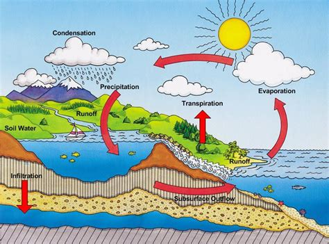 water cycle diagram with explanation water cycle diagram with explanation search evs