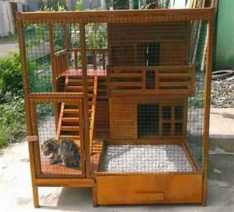 Kandang Kucing Kayu 40 desain rumah kucing dari kayu minimalis renovasi