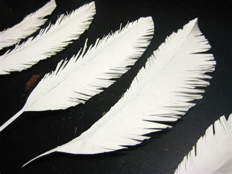 How To Make A Paper Feather - paper feathers create