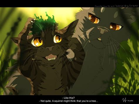 dandelion a warrior beside him books 119 best warrior cats four clans images on