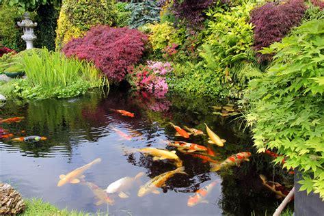 water garden backyard water fountains