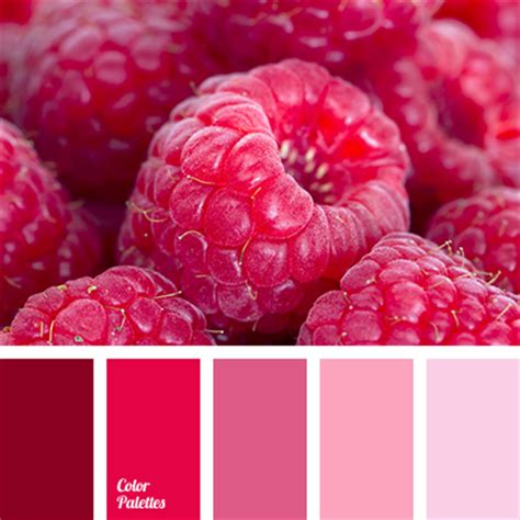 matching colours with pink burgundy candy color color combination color matching color palette dark red hot pink