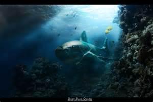 deep blue ocean by sacrifice4 on deviantart