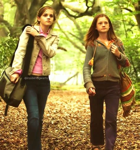 hermione granger and ginny weasley harry potter