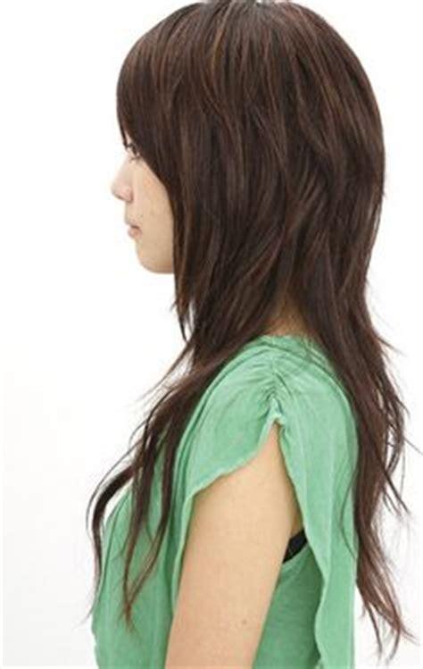 asian style schaunzer hair trim 1000 ideas about japanese haircut on pinterest haircuts