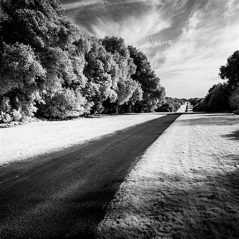 white conversion how to convert a to infrared for black and white