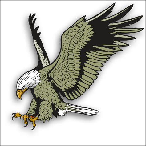 eagle clipart eagle clipart flying eagle pencil and in color eagle