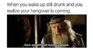 Hangover Meme - 42 hangover memes that capture the regret of drinking too much