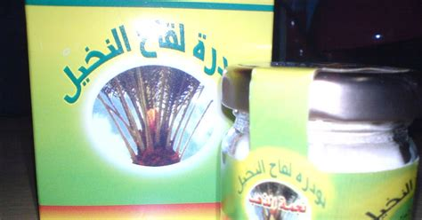 New Madu Datse Lollen Penyubur Kandungan powder datse lollen serbuk sari kurma penyubur kandungan ash shiddiq agency selayar