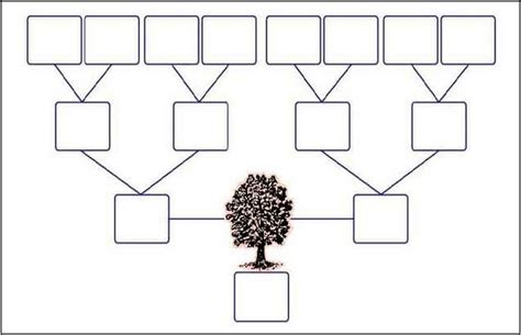 family tree template with siblings 3 generation family tree template with siblings pictures