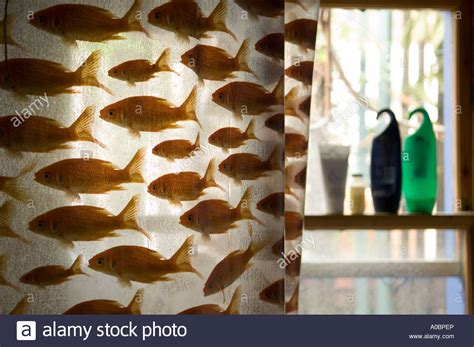 goldfish shower curtain shower curtain with goldfish design stock photo royalty
