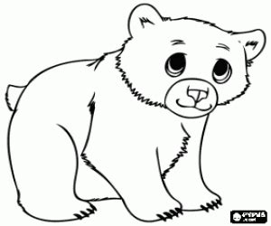 coloring page bear cub bears coloring pages printable games