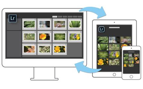light room mobile guides d achat photo 2017 les meilleurs smartphones