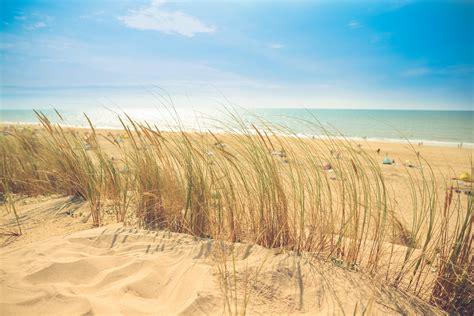 images of beaches free images landscape sea coast sand horizon