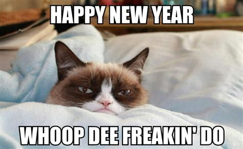 Happy New Year Cat Meme - happy new year memes 2017 very funny images jokes