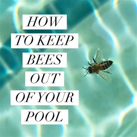 How To Keep Bees Or Bee Keeping In Rhode Island beekeeping like a a beekeeping