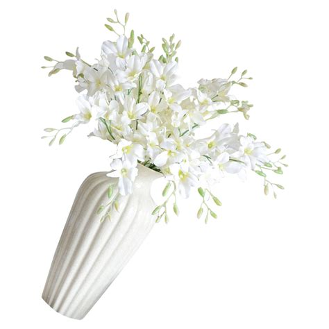 buy wholesale white phalaenopsis orchid from china