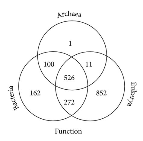 archaebacteria vs eubacteria venn diagram archaebacteria diagram image collections how to guide