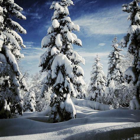 imagenes de invierno gorgeous winter landscapes 12