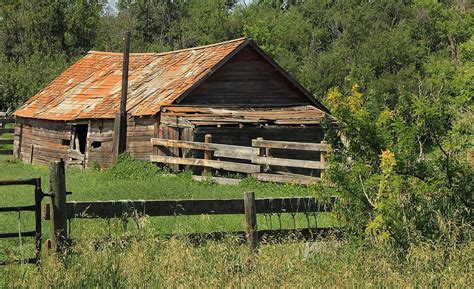 hog shed photograph by jim sauchyn