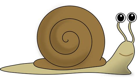 images clipart free snail clipart free images cliparting