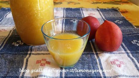succo di frutta fatto in casa ricerca ricette con succo di frutta fatto in casa