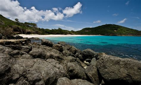 Mick Jagger Bryan Invite Winehouse To Caribbean For by Dialaflight Kate And William To Mustique For