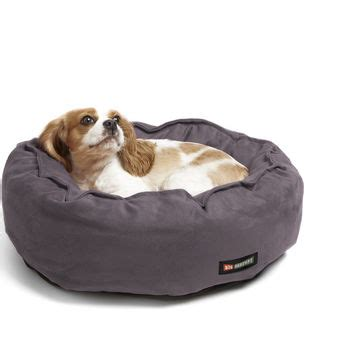 big shrimpy dog bed best clay dogs products on wanelo