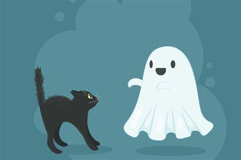 Ghost Of A quiz ghost or cat oxfordwords