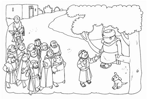 zacchaeus coloring pages bebo pandco