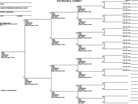 genealogy chart printable ratelco com