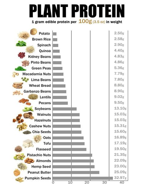 lista alimenti proteine 51 best images about protein chart on calorie