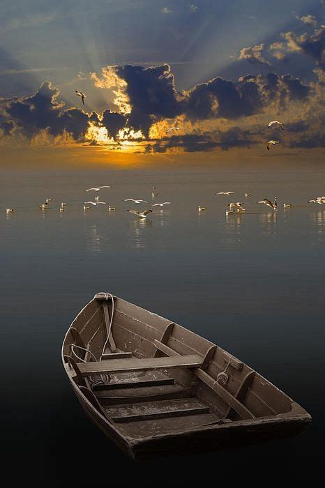 are sea born boats good 23 best images about boats on pinterest lakes peace and