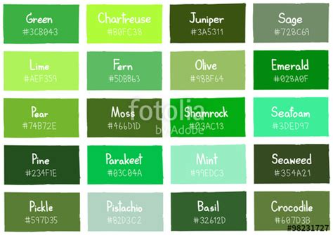 different names of green shades of green and their names www pixshark com