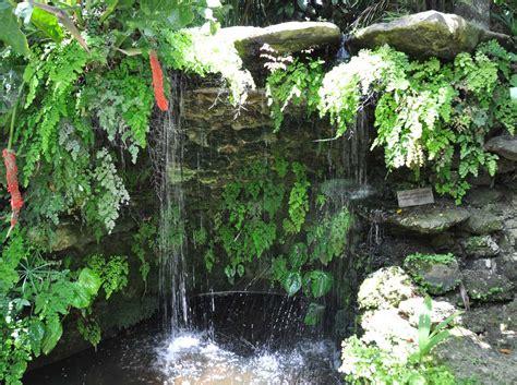 Water Gardening by Water Gardens Tropical Water Garden Plants Displays