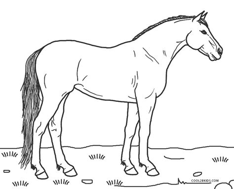 coloring pages horses free printable coloring pages for cool2bkids